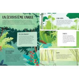 La Planète en Danger, L'Amazonie - Page 1