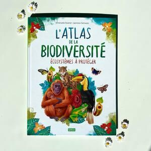 L'atlas de la biodiversité, les écosystèmes à protéger 🌿  Bientôt disponible sur notre site internet 🐝  Lis et émerveille toi avec SASSI Junior 🦄   🌐 Disponible sur notre site internet http://www.sassijunior.fr et dans vos magasins de jouets et librairies préférés 🌐⠀ ⠀ #sassijunior #sassijuniorfrance #livrejeunesse #atlas #biodiversite #animaux #ecosysteme #planete #protection #environnement #nature #vie