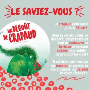 Lis et émerveille toi avec SASSI Junior 🦄⠀ ⠀ 🌐 Disponible sur notre site internet http://www.sassijunior.fr et dans vos magasins de jouets et librairies préférés 🌐⠀ ⠀ #sassijunior #sassijuniorfrance #livrejeunesse #crapaud #livre #album #degout